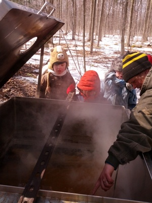 boiling sap with kids