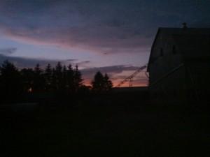 dusk at the farm