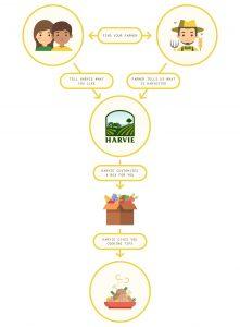 Harvie Infographic