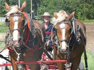horses2.sml