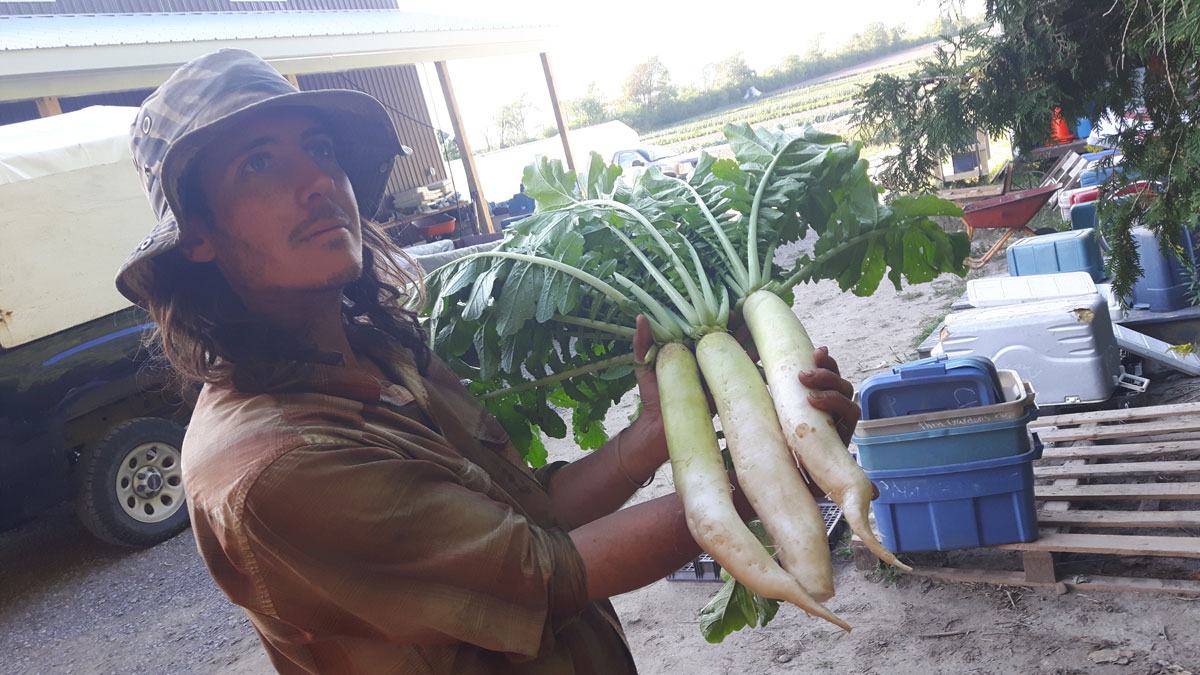 huge veggies